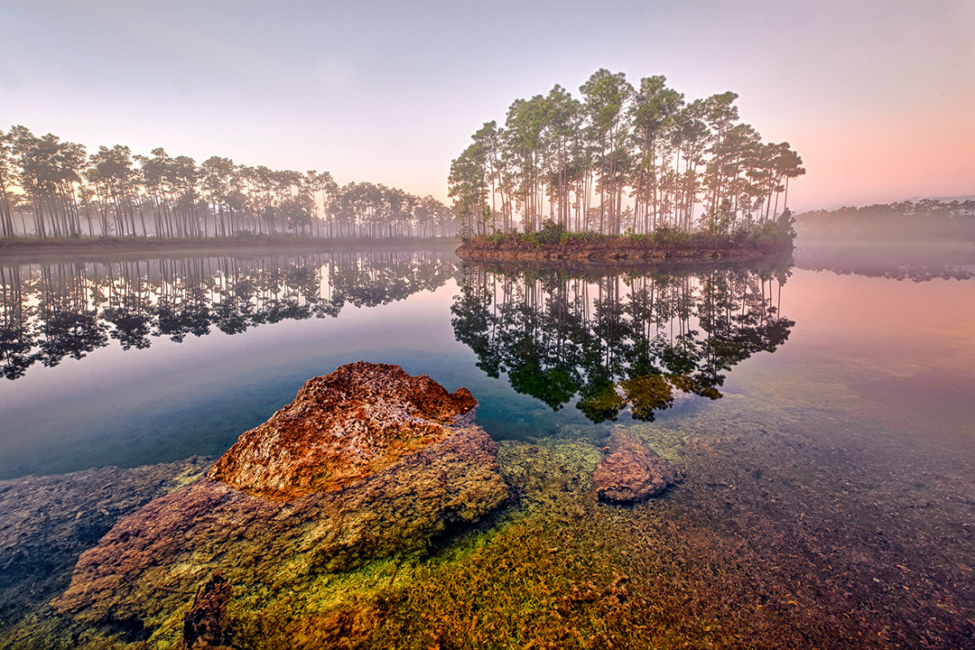 3 top places to take an eco-tour in Florida