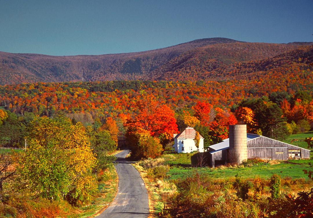 Best places in New England to catch the changing leaves this fall