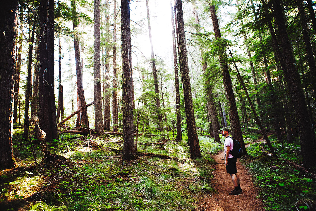 Discovering the Pacific Crest Trail