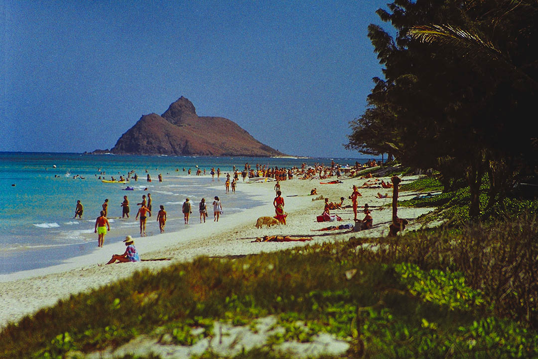 Experience three spectacular spots along Oahu's Windward Coast