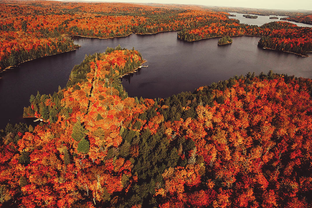 Leaf peeping in New England: 10 regions and scenic byways you must visit while on locum tenens assignment