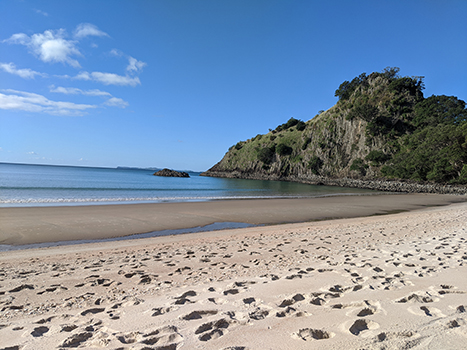 North Island New Zealand beach