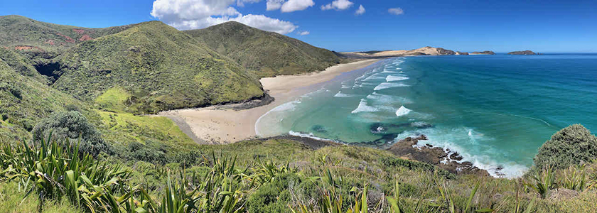 Far North region beach in New Zealand