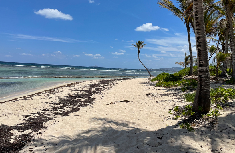 What it's like living as a locums in the Caribbean
